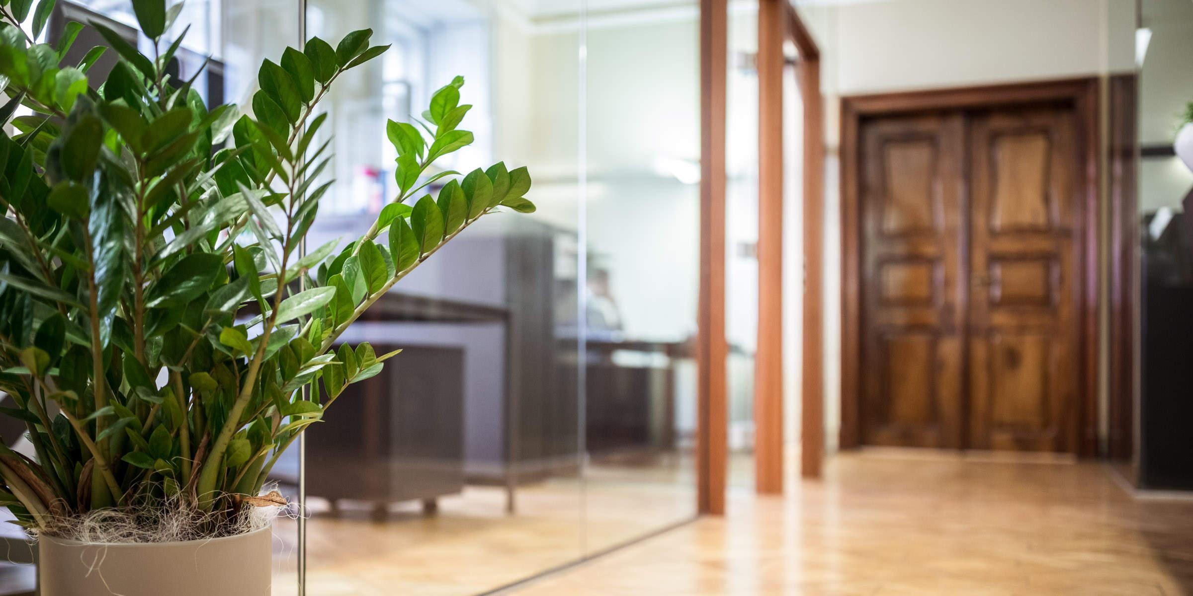 Flur der Kanzlei Perathoner und Partner - bildlich für Immobilien und Raumordnung